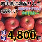岩手県 江刺産 りんご 訳あり 10kg 大玉から小玉 約24コから50コ 送料無料 一部地域を除く 江刺