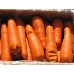 無農薬無化学肥料にんじん(規格外品) 5kg (常温便)【送料無料 / ※一部地域を除く】