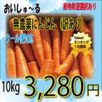【新規出店 特別セール!】 無農薬無化学肥料 にんじん (規格外品) 10kg (クール便)【送料無料 / ※一部地域を除く】