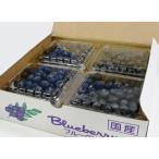 高級ブルーベリー1kg 有機肥料栽培 生ブルーベリー 無農薬 贈答 冷蔵便