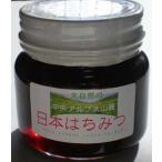 はちみつ 国産 日本はちみつ250g 中央アルプス山麓  ハチミツ 蜂蜜 幻の蜂蜜