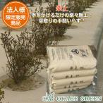 楽土 草が生えない土 防草土 舗装土 水で固まる土 簡単 25kg 雑草対策 雑草防止 環境にやさしい 水を通す
