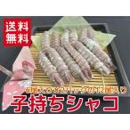 これ一つで送料無料 子持ちムキシャコ14尾 蝦蛄