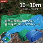 ブルーシート タープ 厚手 防水 規格 #3000 サイズ 10m×10m 青&緑