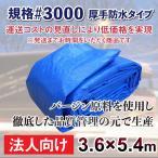 ブルーシート 3000規格 厚手 防水 サイズ3.6m×5.4m 1枚 エコノミー 法人 商店 団体向け