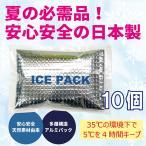 熱中症予防 熱中症対策グッズ 暑さ対策 保冷剤 日本製 10パック