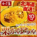 栗かぼちゃ 「くり将軍」 北海道産 カボチャ(10kg/約4〜7玉) 産地直送 送料無料