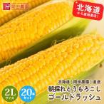 とうもろこしゴールドラッシュ 北海道産トウモロコシ朝採れ直送(2Lサイズ×20本セット)
