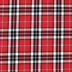 生地 テッキングタータン(18-0611) 30.赤×水色ライン (b)k1