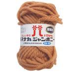 ショッピング毛糸 毛糸 ハマナカ ジャンボニー(3307) 3.うす茶 (f)5b