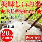28年産 大粒業務用米20kg【10kg×2袋】
