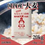 もっちもち大麦 20kg (5kg×4袋) 30年岡山県産 暮らしの応援クーポン利用可能