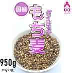 30年岡山県産プレミアム紫もち麦 900g