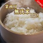 業務用 無洗米 10kg (5kg×2袋) 送料無料