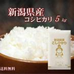 29年産新潟県産こしひかり5kg 送料無料 お試し価格で新発売