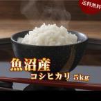 米 お米 5kg 魚沼産コシヒカリ 30年産 送料無料の画像