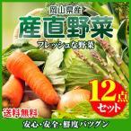 岡山県産 朝穫れ野菜詰め合わせ 12点セット