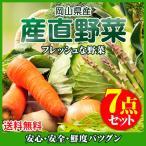 岡山県産 朝穫れ野菜詰め合わせ 7点セット