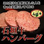 石垣牛ハンバーグセット