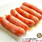 沖縄 きびまる豚 冷凍 ソーセージ バーベキュー 肉 BBQ (プレーン/20g×6本入)