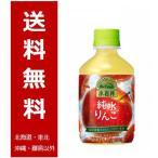 (送料無料) キリン 小岩井 純水りんご PET 280ml×24本