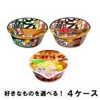 日清食品 どん兵衛 ミニ & チキンラーメン ミニ 選り取り (12個入×4ケース) きつね 肉うどん