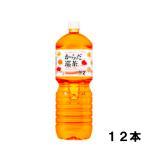 からだ巡茶 2l 12本 (6本×2ケース) PET お茶 ダイエット 健康茶 安心のメーカー直送 日本全国送料無料