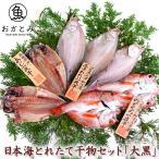 のどぐろ あじ えてかれい 日本海とれたて 干物 セット 「大黒」 だいこく 送料無料 贈り物 お祝い 国産 島根県産 一日漁 お取り寄せ