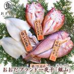 干物セット 送料無料 おおだブランド 一夜干 「銀山」 甘鯛 のどぐろ 白いか 国産 島根県産 一日漁 無添加 お祝い 贈り物 お取り寄せ