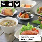 肉肉セット福袋 13品計26パック (チキン ステーキ  ホ