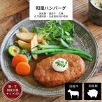 国産ハンバーグ和風ソース 肉料理 メイン 洋食  無添