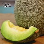 熊本県産 肥後グリーン 1箱/2玉入 5Lサイズ