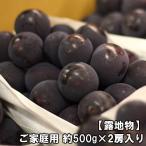 オーロラ・ブラック  岡山県産 ご家庭用 2kg/3〜5房入り(房数指定不可)