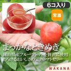 パティスリーWAKANA/まっかなときめき(6個入り) 【常温】トマトゼリー/フルーツトマトの至福のジュレ!お取り寄せスイーツ、お祝い、お返し、内祝い