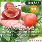 パティスリーWAKANA/まっかなときめき(9個入り) 【常温】トマトゼリー/フルーツトマトの至福のジュレ!お取り寄せスイーツ、お祝い、お返し、内祝い