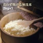 令和1年産 コシヒカリ 2kg 岡山県産米100% 無洗米 洗わずに炊ける 送料無料(一部地域を除く)