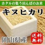 ほたるの集う田んぼのお米 岡山県産キヌヒカリ(玄米)10kg(5kg×2袋) 送料無料(一部地域を除く)