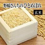 令和元年産生産者特定米 野崎さんちのひとめぼれ(玄米)10kg(5kg×2袋)  送料無料(一部地域を除く)