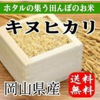 ほたるの集う田んぼのお米 岡山県産キヌヒカリ(玄米)5kg(5kg×1袋) 送料無料(一部地域を除く)