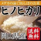 めだかの泳ぐ田んぼのお米 岡山県産ヒノヒカリ(玄米)5kg(5kg×1袋) 送料無料(一部地域を除く)