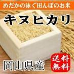 めだかの泳ぐ田んぼのお米 岡山県産キヌヒカリ(玄米)20kg(5kg×4袋) 送料無料(一部地域を除く)