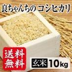 令和2年産生産者特定米 良ちゃんのコシヒカリ(玄米)20kg(5kg×4袋)  送料無料(一部地域を除く)