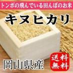 とんぼの飛んでる田んぼのお米 岡山県産キヌヒカリ(玄米)20kg(5kg×4袋) 送料無料(一部地域を除く)