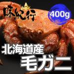 エゾキンチャク貝 貝柱 北海道産 個別冷凍 わけあり サイズ不揃い 割れ欠けアリ 017