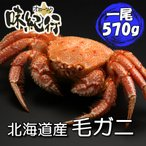 Yahoo Shopping - 毛ガニ 北海道産 約570g 1尾入り ボイル済 ギフト カニ かに 蟹