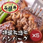 石垣牛ハンバーグ8個 ギフトセット 5箱セット【ポイント10倍】