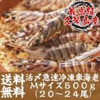 Shrimp - 活〆急速冷凍車海老Mサイズ 500g20〜24尾入