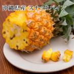 Pineapple - パイン 沖縄県産スナックパイン 6kg +1玉