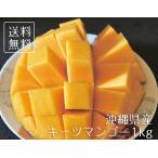【期間限定】沖縄産完熟キーツマンゴー【ご家庭用】1kg (1〜2玉) トロピカルフルーツ 南国フルーツ