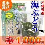 ショッピング送料込 海ぶどう 久米島産 20g タレ付き 送料込 海ブドウ